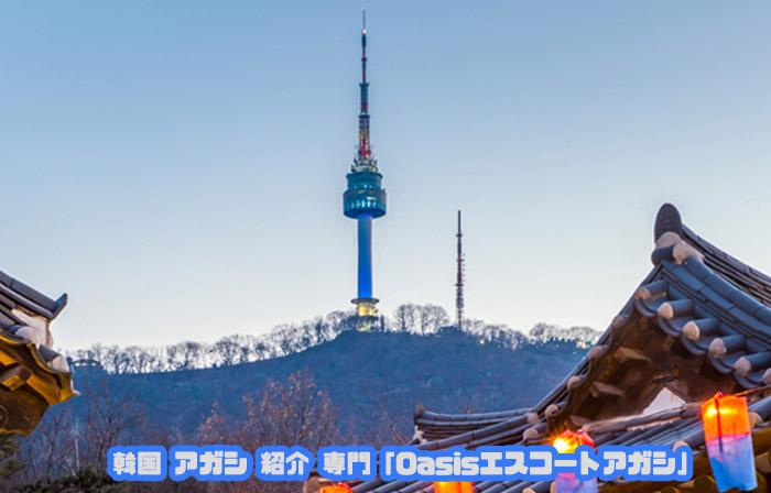 韓国アガシとNソウルタワー